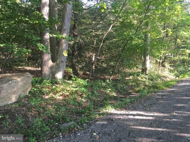 0 Mountain Road, GORDON, PA 17936 (#PASK130628) :: Erik Hoferer & Associates