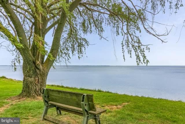 3940 Ellendale Farm Drive, ROCK HALL, MD 21661 (#MDKE116570) :: Jacobs & Co. Real Estate