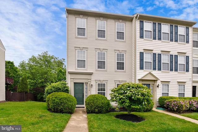 22314 Great Trail Terrace, STERLING, VA 20164 (#VALO411298) :: The Putnam Group
