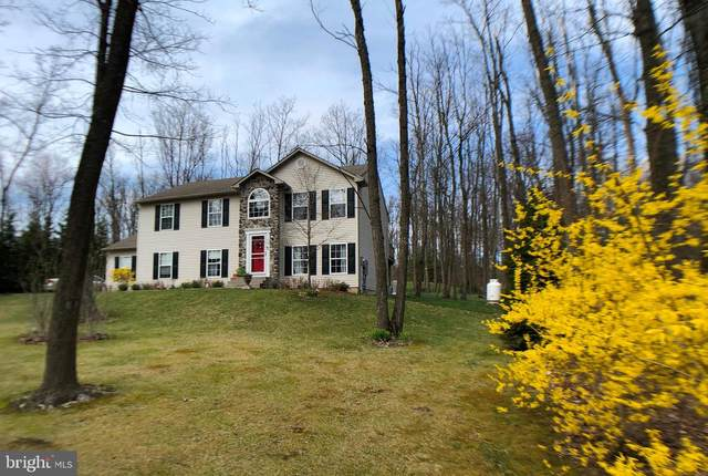 436 Rabbit Run Road, ANDREAS, PA 18211 (#PASK130634) :: The Craig Hartranft Team, Berkshire Hathaway Homesale Realty