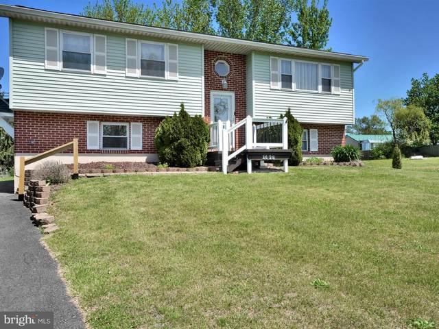 1436 Wynonah Drive, AUBURN, PA 17922 (#PASK130636) :: The Craig Hartranft Team, Berkshire Hathaway Homesale Realty