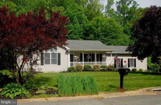 74 Crows Foot Drive, NORTH EAST, MD 21901 (#MDCC169440) :: Radiant Home Group