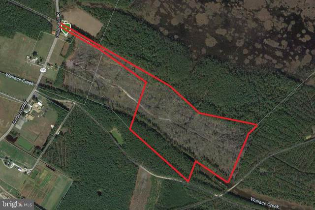 Sika Land, CHURCH CREEK, MD 21622 (#MDDO125458) :: Bruce & Tanya and Associates