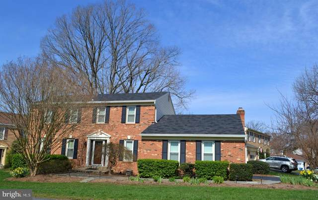 8011 Daffodil Court, SPRINGFIELD, VA 22152 (#VAFX1129670) :: Debbie Dogrul Associates - Long and Foster Real Estate