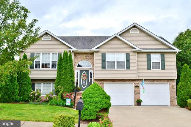 775 Fulton Drive, STRASBURG, VA 22657 (#VASH119238) :: Bob Lucido Team of Keller Williams Integrity