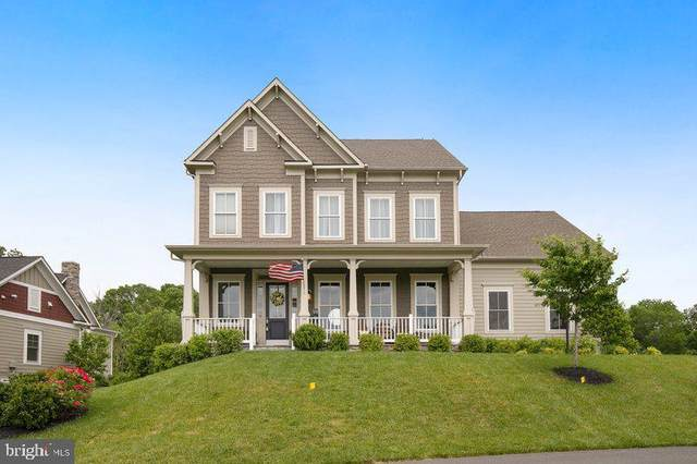 25704 Green Ash Lane, ALDIE, VA 20105 (#VALO411364) :: Pearson Smith Realty