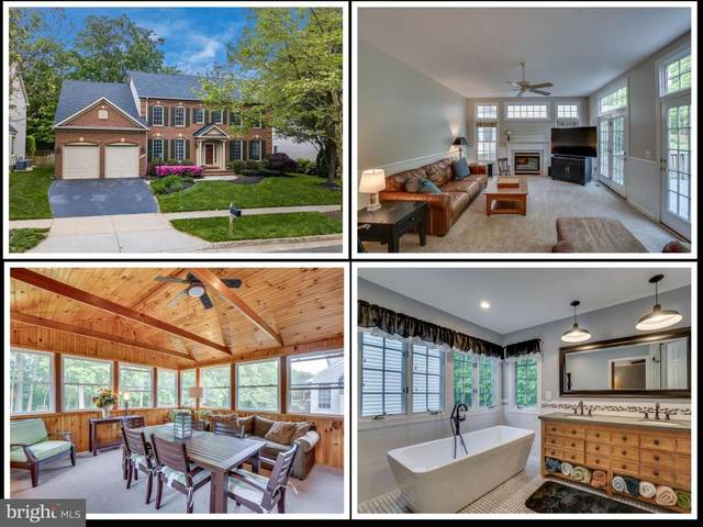 43671 Mink Meadows Street, CHANTILLY, VA 20152 (#VALO411378) :: Erik Hoferer & Associates