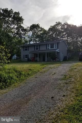 219 Meadowlark Lane, SHEPHERDSTOWN, WV 25443 (#WVJF138884) :: AJ Team Realty