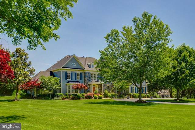 17072 Silver Charm Place, LEESBURG, VA 20176 (#VALO411420) :: Network Realty Group