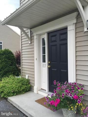 113 Ironwood Court, DENVER, PA 17517 (#PALA163308) :: Liz Hamberger Real Estate Team of KW Keystone Realty