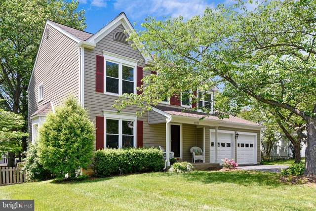 17293 Pickwick Drive, PURCELLVILLE, VA 20132 (#VALO411458) :: EXP Realty