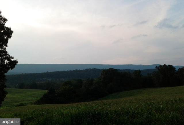 4 Gray Fox Trail, BERKELEY SPRINGS, WV 25411 (#WVMO116896) :: Bob Lucido Team of Keller Williams Integrity