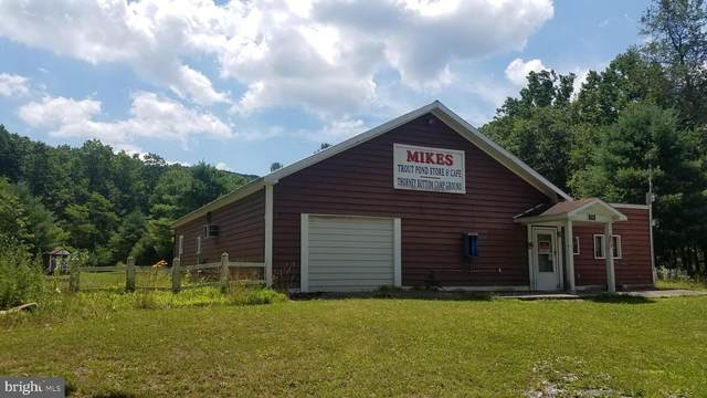 5584 Thorne Bottom Rd., LOST CITY, WV 26810 (#WVHD105984) :: Hill Crest Realty