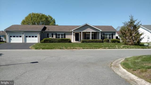 507 Weaver Drive, DOVER, DE 19901 (#DEKT238628) :: RE/MAX Coast and Country