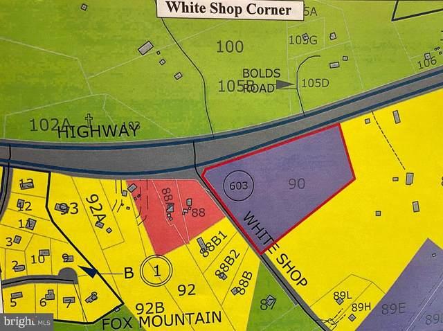 White Shop, CULPEPER, VA 22701 (#VACU141490) :: Network Realty Group