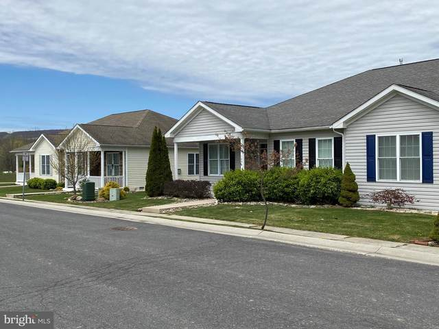 Candlewick Court, FROSTBURG, MD 21532 (#MDAL134304) :: ExecuHome Realty