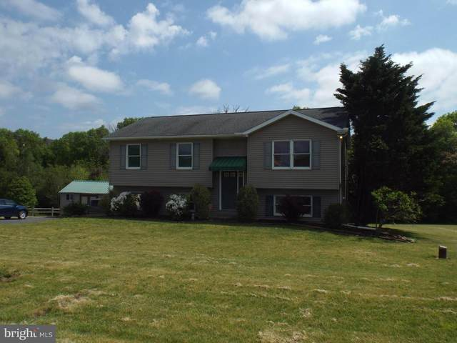 11 Tyler Avenue, PINE GROVE, PA 17963 (#PASK130690) :: TeamPete Realty Services, Inc