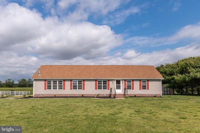 4764 Cedar Neck Road, MILFORD, DE 19963 (#DESU161482) :: RE/MAX Coast and Country