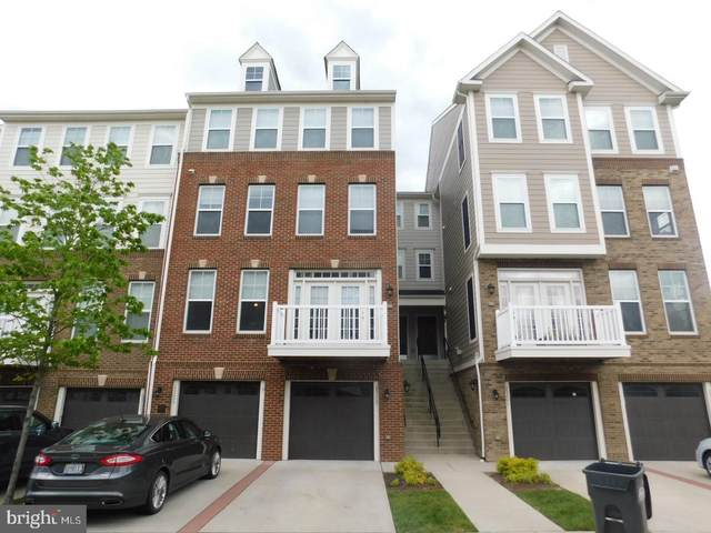 25207 Briargate Terrace, CHANTILLY, VA 20152 (#VALO411682) :: The Piano Home Group