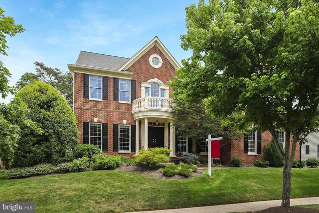 26158 Glasgow Drive, CHANTILLY, VA 20152 (#VALO411686) :: Colgan Real Estate