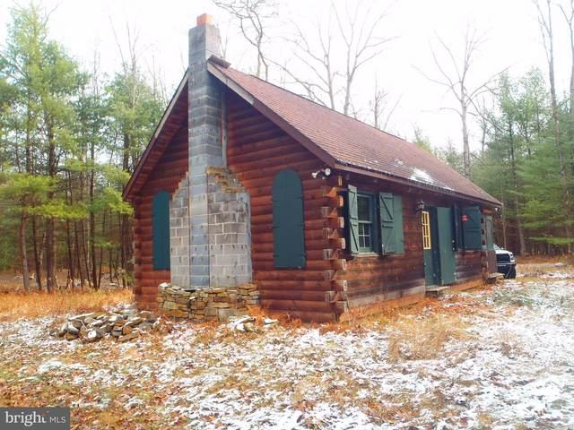 1 Beech Creek Mountain Road, BEECH CREEK, PA 16822 (#PACL100044) :: Tessier Real Estate
