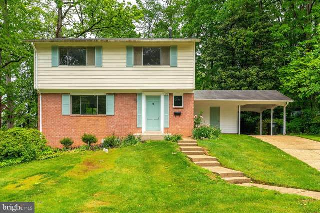 8638 Cromwell Drive, SPRINGFIELD, VA 22151 (#VAFX1130516) :: The Dailey Group