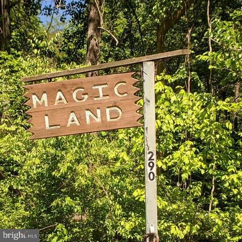 290 Blue Ridge Road, FRONT ROYAL, VA 22630 (#VAWR140372) :: ExecuHome Realty
