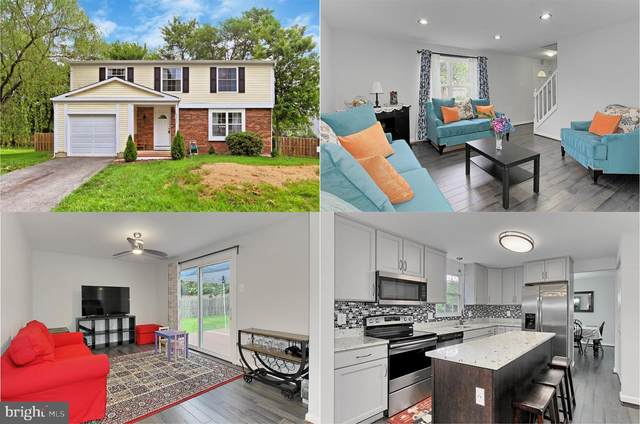 7211 Sterling Grove Drive, SPRINGFIELD, VA 22150 (#VAFX1130522) :: Debbie Dogrul Associates - Long and Foster Real Estate