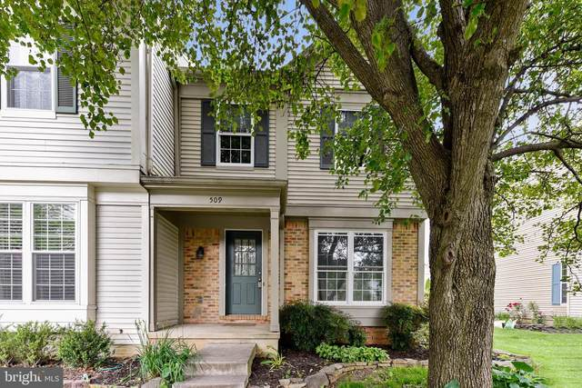 509 Currant Terrace NE, LEESBURG, VA 20176 (#VALO411784) :: The Dailey Group