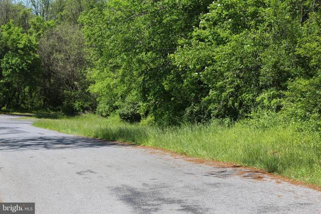 Licking Creek Road-Tract 2, BIG POOL, MD 21711 (#MDWA172496) :: Jacobs & Co. Real Estate