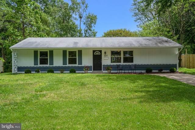 8017 Ashboro Drive, ALEXANDRIA, VA 22309 (#VAFX1130726) :: Eng Garcia Properties, LLC