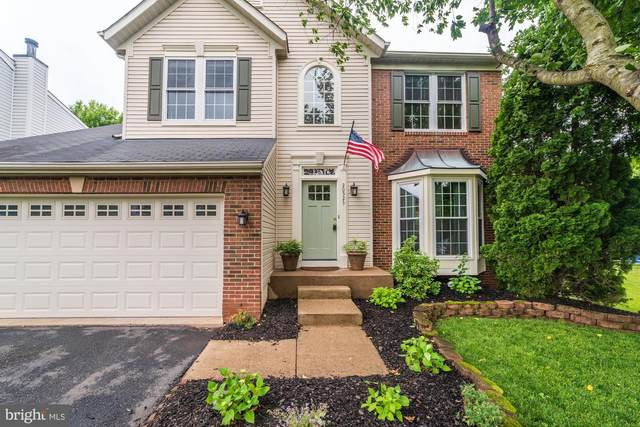 20523 Norwich Place, ASHBURN, VA 20147 (#VALO411814) :: The Gus Anthony Team