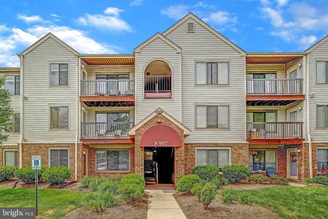 8397 Buttress Lane #401, MANASSAS, VA 20110 (#VAMN139632) :: Jacobs & Co. Real Estate