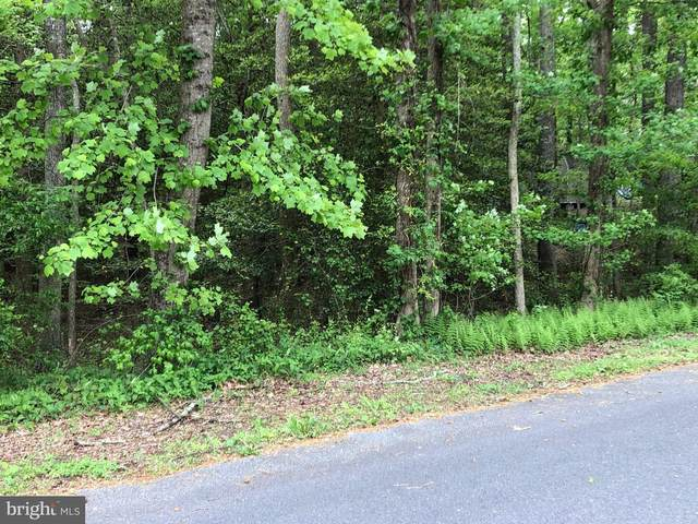 Lot 21 Dogwood Drive, SNOW HILL, MD 21863 (#MDWO114092) :: Coastal Resort Sales and Rentals