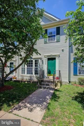 6666 Roderick Loop, GAINESVILLE, VA 20155 (#VAPW495690) :: Jacobs & Co. Real Estate