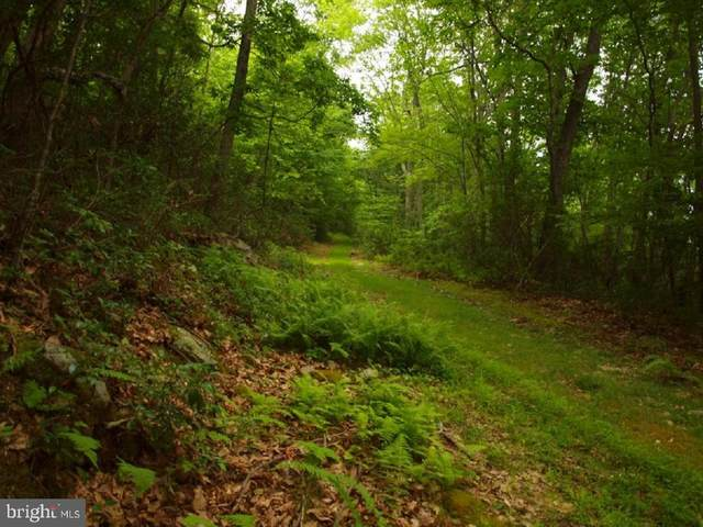 00 Long Mountain Rd., FRANKLIN, WV 26807 (#WVPT101484) :: Gail Nyman Group