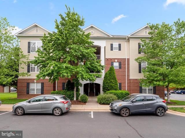 42544 Hollyhock Terrace #201, BRAMBLETON, VA 20148 (#VALO411898) :: The Team Sordelet Realty Group