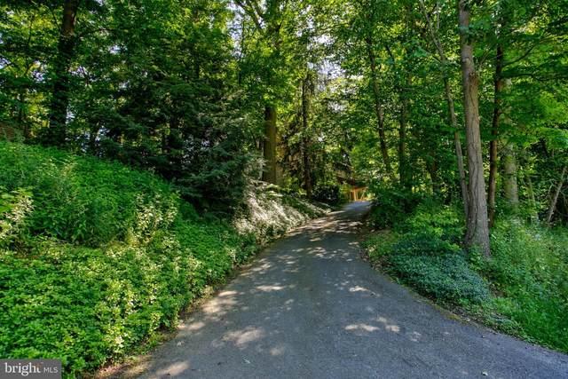 3091 Back Run Road, MANHEIM, PA 17545 (#PALA163648) :: Flinchbaugh & Associates