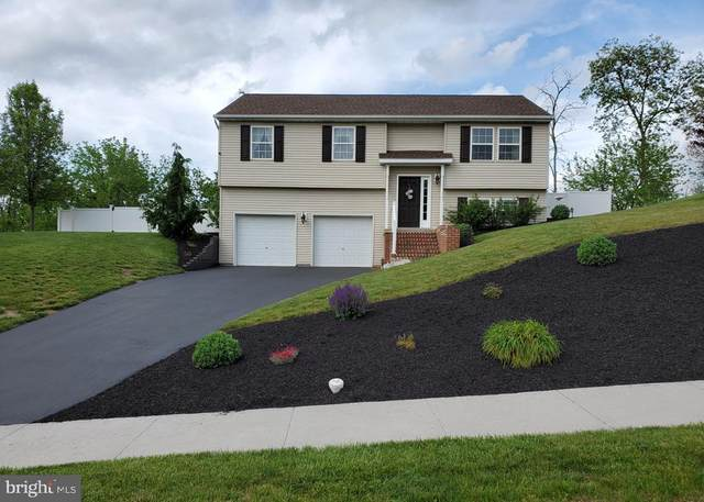 15 Pheasant Ridge Road, DILLSBURG, PA 17019 (#PAYK138286) :: Liz Hamberger Real Estate Team of KW Keystone Realty