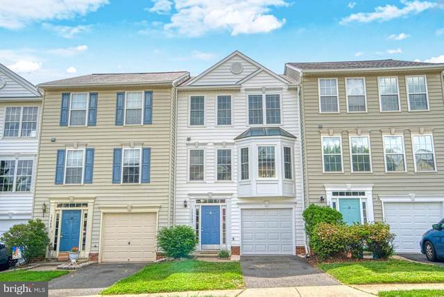 17367 Avion Square, ROUND HILL, VA 20141 (#VALO411974) :: The Dailey Group