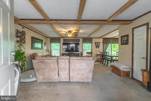 3767 Layfield Road, PENNSBURG, PA 18073 (#PAMC650086) :: Linda Dale Real Estate Experts