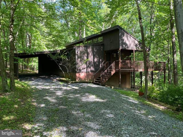207 Mild Winter Road, HEDGESVILLE, WV 25427 (#WVBE177436) :: The MD Home Team