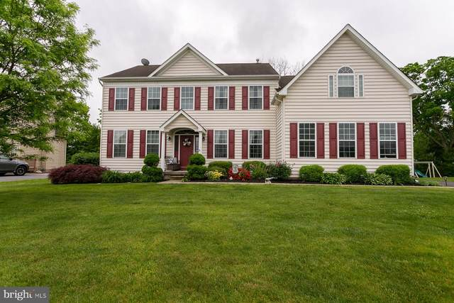 113 Fair Meadow Drive, DOUGLASSVILLE, PA 19518 (#PABK358278) :: Linda Dale Real Estate Experts