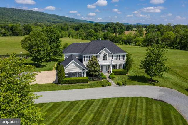 37986 Kite Lane, LOVETTSVILLE, VA 20180 (#VALO412098) :: Peter Knapp Realty Group