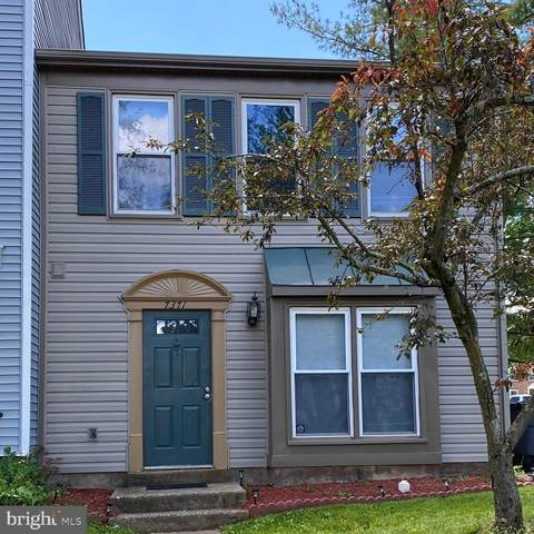 7371 Rokeby Drive, MANASSAS, VA 20109 (#VAPW495954) :: Great Falls Great Homes