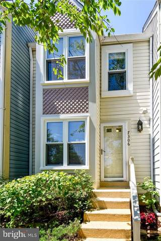 7306 Eastgate Lane, ALEXANDRIA, VA 22315 (#VAFX1131682) :: Arlington Realty, Inc.