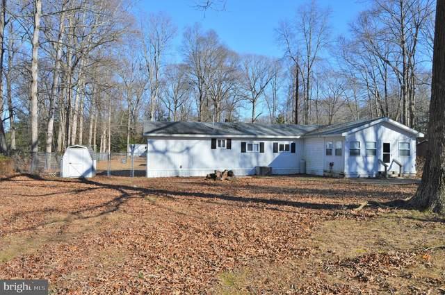 33951 Pierce Lane, LEWES, DE 19958 (#DESU161830) :: Tessier Real Estate
