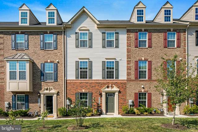 8206 Miner Street, GREENBELT, MD 20770 (#MDPG569894) :: Shamrock Realty Group, Inc
