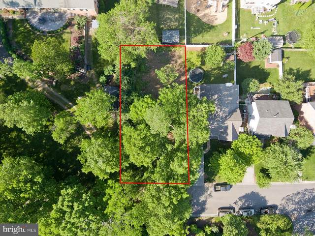 512 Miller Street, WINCHESTER, VA 22601 (#VAWI114536) :: ExecuHome Realty