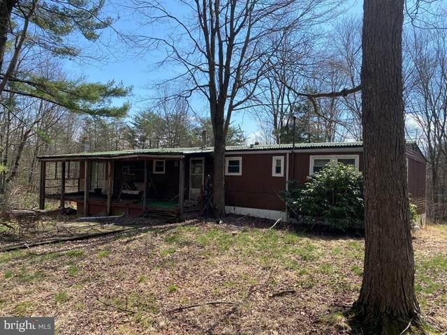 461 Black Walnut Farm Road, BEDFORD, PA 15522 (#PABD102318) :: LoCoMusings